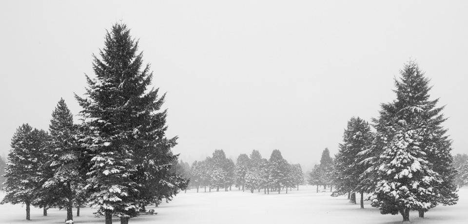 Virginia Snow Day